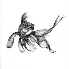 a goldfish in ballpoint pen - first drawing of Pencil Portrait Drawing, Pencil Art Drawings, Animal Drawings, Betta Fish Tattoo, Ballpoint Pen Art, Beautiful Dark Art, Fish Drawings, Tattoo Flash Art, Alien Art