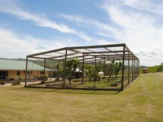 Great idea for protecting fruit trees and veg garden Fruit Tree Garden, Garden Trees, Edible Garden, Fruit Trees, Vegetable Garden, Garden Birds, Bird Netting, Garden Netting, Fruit Cage