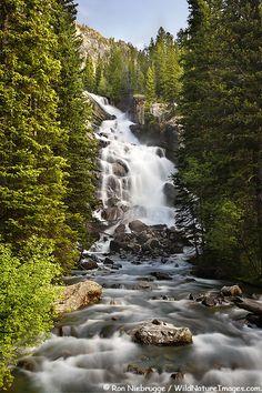 Hidden Falls on Cascade Creek, Grand Teton National Park, Wyoming. Photo: Ron Niebrugge via WildNatureImages