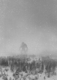 It is believed that this is the only photo in existance of the Great Norwegian Mountain Troll. It was taken in December 1942 by the crew of an RAF recon flight 300 miles north of Bergen.