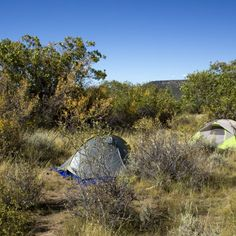 South Rim Campground - Black Canyon of the Gunnison National Park