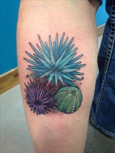 Sea Anemone Tattoo : anemone, tattoo, Tattoos, Ideas, Tattoos,, Tattoo, Designs