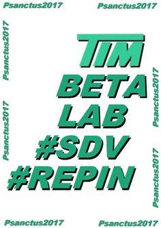 TIM BETA LAB - SDV REPIN