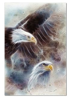 Bald Eagle. Can be hang together or separately. Price is for both panel. * Our photographic art works printed in our facilities by using the latest printing technology to show the vibrancy, details an