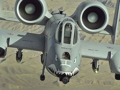 A-10 Thunderbolt with its 30mm Gatling gun. Someone is about to have a very bad day.