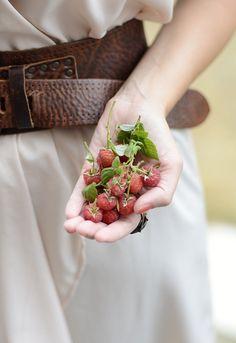 Held...Berries