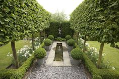 formal garden canal between pleached hedges