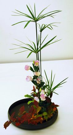 """Yamato Misyoryu"" Ikebana Exhibition in Kusatsu by Mai Wakisaka Photography, via Arrangement: Ikebana Flower Arrangement, Ikebana Arrangements, Flower Vases, Cactus Flower, Arte Floral, Deco Floral, Contemporary Flower Arrangements, Tropical Floral Arrangements, Japanese Plants"