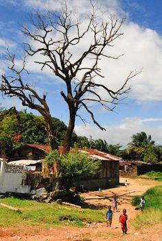 Liberia, 2007 by Robert Larson
