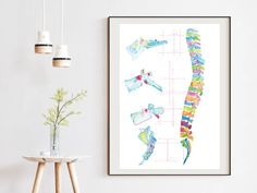 Spine Anatomy Abstract Art Print, an ideal chiropractic and physical therapy office wall art Office Wall Decor, Office Walls, Office Art, Human Spine, Anatomy Art, Human Anatomy, Space Painting, Feather Art, Chiropractic Office