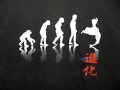 Aikido Evolution Tee