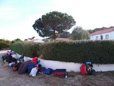 Depois de uma Semana de Campo em cheio, o regresso a casa.  #colegioalfragide #amadora #portugal #semanadecampo2015