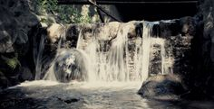 Cute little waterfall Waterfall, World, Cute, Pictures, Photography, Outdoor, Photos, Outdoors, Photograph