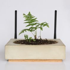 Cybernetic Meadow tech products sprouting  plants by The Consortium for Slower Internet