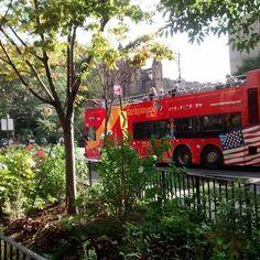 #newyork #newyorkcity #ny #nyc #urban #metropolis #bigapple #manhattan #architecture #city #arquitectura #archilovers #architecturelovers #bigcity #cities #architexture #architect #citylife #cityscape #urbanfurniture #metropolitan #metro #town #megacity #downtown #ciudad #bus #tourbus #tour #trees