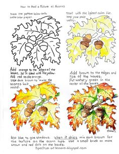 Adron's Art Lesson Plans: Printable How To Paint A Picture of Acorns And Autumn . - Adron's Art Lesson Plans: Printable How To Paint A Picture of Acorns And Autumn Leaves Worksheet, - Watercolor Painting Techniques, Watercolor Tips, Watercolour Tutorials, Painting & Drawing, Drawing Lessons, Painting Lessons, Art Lessons, Painting Videos, 8th Grade Art