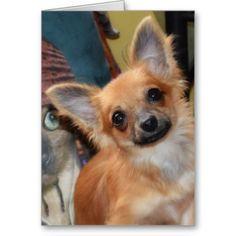 Birthday Card | Chihuahua Puppy Chi Chi Dylan