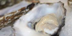 Gillardeau oester