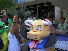 Más de 20 colectivos entregaron una serie de propuestas ante el Concejo Municipal, en las que se exige la prohibición de corridas de toros, circos con animales y otros eventos que no aparecen en la ordenanza que se pretende aprobar en los próximos días.  http://www.animanaturalis.org/n/41439/