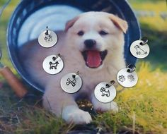 Add On: Dog Charms  Puppy  Doggie  Canine  Charm by ILoveItandMore