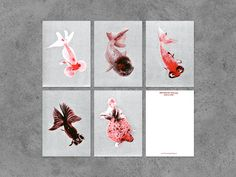 Cultivated forms of carps. In China, this species of fish is counted among the highest forms of aesthetics. Set of five cards, each one is Shops, Ideal Beauty, Web Design, Graphic Design, Chinese Culture, Goldfish, Fascinator, Invitations, Invite