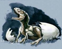 Tyrannosaurus baby. Art by Gonzalezaurus