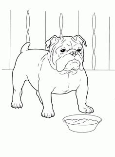 Dog Coloring Book Pages Horse Coloring Pages, Dog Coloring Page, Adult Coloring Pages, Coloring Books, Kids Coloring, Colouring, Art Beagle, Beagle Puppy, Bulldog Drawing