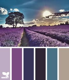 Color: Lavender Setting by Design Seeds - lavender, purple, indigo, midnight blue, slate blue, grey.
