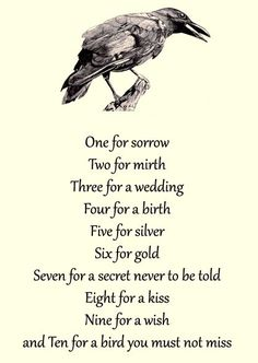 One for Sorrow Nursery Rhyme<<<------- writing prompt? Writing Help, Writing Tips, Writing Prompts, Poem Quotes, Life Quotes, Raven Quotes, Rhyming Quotes, One For Sorrow, Writing Inspiration