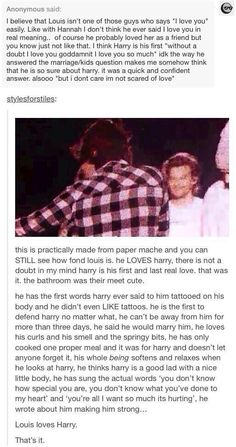 harry loves louis and louis loves harry.