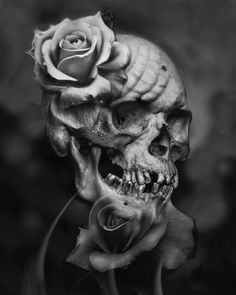 "Out of Step Books Publishing on Instagram: ""We love this outstanding #rose #skull by @delberto1 that can be seen in our ""Black & White: Volume Two"" book. Our B&W book series features an outstanding lineup of artists from around the globe, all contributing their black & white treasures. Check it out at www.OOSBooks.com (**stock of Volume One is getting low...so scoop one up while you can)"""