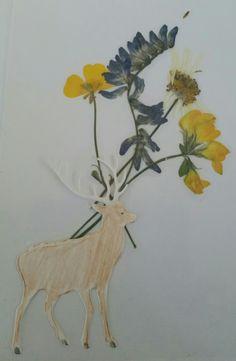 Kort som Sunniva har laget med pressede blomster 😀 🌹 🌹