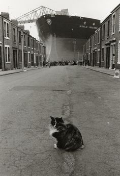 """""""Smudge enjoying the moment!The launch of """"World Unicorn"""" Wallsend, 1973 - River Project - Photography - Amber Online. Urban Photography, Street Photography, Old Pictures, Old Photos, Newcastle Gateshead, The Last Ship, Black And White City, North East England, Industrial Photography"""