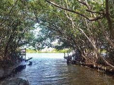 Actualización+del+Reglamento+de+la+Ley+de+protección+al+medio+ambiente+del+Estado+de+Yucatán