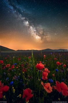the magical flowering of Castelluccio at night. Italy