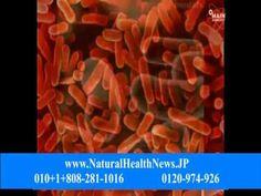 アンチウイルスプログラム, 抗酸化肌, ウイルスアンチウイルスソフトウェア, 細菌感染の治療法, 細菌感染症の救済, 細菌は、人を殺すこと