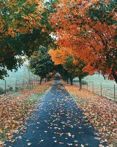 otoño<3