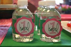 Pink and green lady bug party ideas