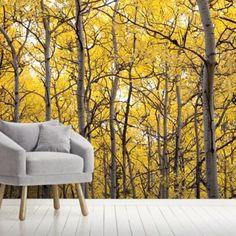 59 Best Aspen Tree Decor Images Decor Aspen Birch Tree Decor
