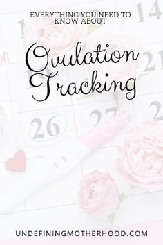 Overwhelmed by all the ovulation tracking methods? We make it simply and help you choose the best way to track ovulation for you . Fertility Diet, Fertility Spells, Fertility Boosters, Get Pregnant Fast, Getting Pregnant, Cervical Mucus, Dancing Baby, Trying To Conceive, Fiesta Party