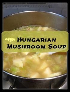 hungarian mushroom soup from the old country
