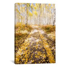 Road To Fall by Dan Ballard Photographic Print on Canvas