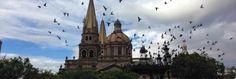 The+Top+Restaurants+In+Centro+Histórico,+Guadalajara,+Mexico