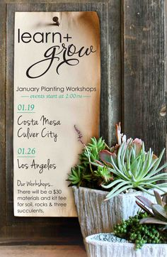 Learn + Grow for January learn to create succulent arrangements and terrariums