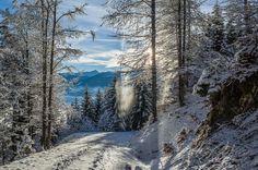 little bit of winter