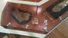 Museu Nacional - RJ