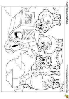 274 Meilleures Images Du Tableau Coloriages Animaux De La Ferme