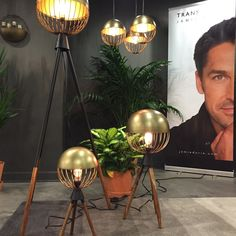 Setting up for the opening of our Jamie Durie Transterior ranges