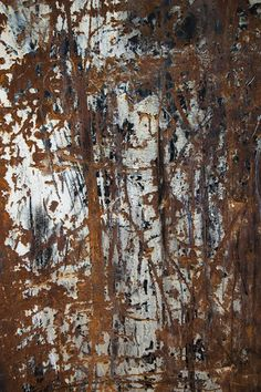 Charlie Ferguson sees the scrapes, scratches, rust and peeling paint on trash dumpsters as random artistic abstractions Growth And Decay, Time And Weather, Texture Photography, Art Boards, Composition, Flaws, Artwork, Painting, Work Of Art