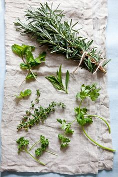 herbs. The collection is wonderful and the photography too.
